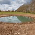 Froyle Pond 4